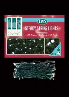 steady LED String lights