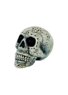 Natural Carved Skull with DOD Markings