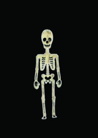 Light up skeleton