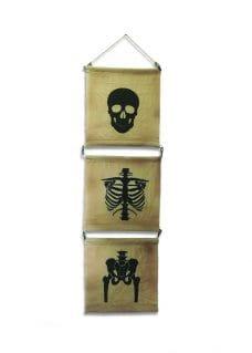 Hessian Flag Skeleton