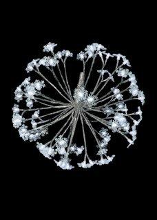 3D Motif Dandelion with Snowflakes