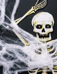 Skeleton Decor